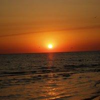 Black sea 06 :: Юрий Котов