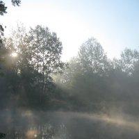 Утро над рекой :: Павел Суетов