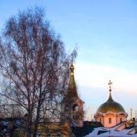 Грачи еще не прилетели :: Александр Белов
