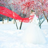 Зимняя свадьба :: Natalia Komleva