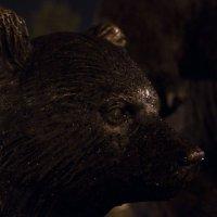 Медведь :: Игорь Погорелов
