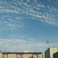 Небо над головой :: Игорь Погорелов
