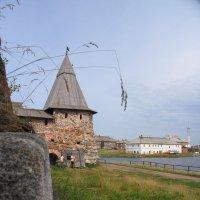 Соловецкий монастырь :: Светлана Лебедева