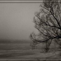 Холодная вечность :: Кристина Кеннетт