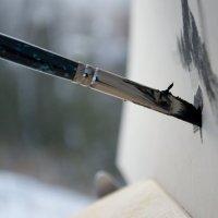 paints :: Дмитрий Литвинчук