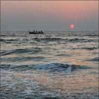 Индия :: Сергей Жеребцов