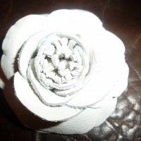белый цветок :: dana c
