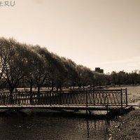 Парк :: Максим Чаюков