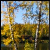 Осень. :: Владимир Булучевский