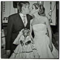 WWW.RU (Свадебная с Обезьянкой) :: Андрей Пашис