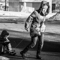 Снега не завезли =) :: Николай Шумилов
