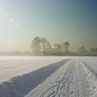 Зимний туман :: Никита Киселев