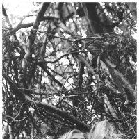 """Работы преподавателя фотошколы """"Фото-класс"""" Юрия Кленова :: Ольга Иванова"""
