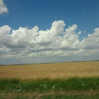 облака, белогривые лошадки... :: Inna Nelepova