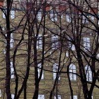 Новый город :: Андрей Журавлёв