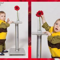 Маленькая пчелка2 :: Helena Libertad