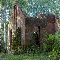 На графских развалинах :: Светлана Игнатьева