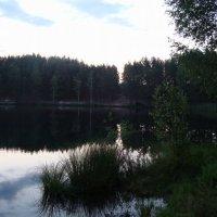 Озеро :: Ольга Мореходова