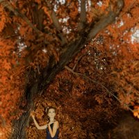 Lady Autumn :: KseSha Шевелева
