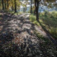 Тихие шаги осени... :: Александр Семенов