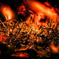 в огне1 :: Андрей Гаврилов