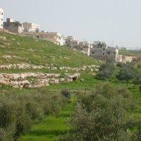 Иордания :: mohammad al-abed