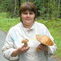 По грибы :: валерий Кривошейцев