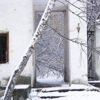 Зимнее кружево :: Стил Франс