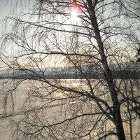Короткий зимний день :: Стил Франс