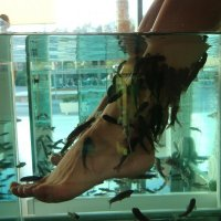 Ножки в рыбках :: Алла )