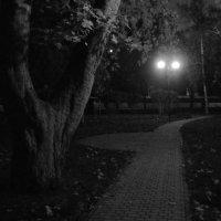 Парк :: Ольга Гагаузова