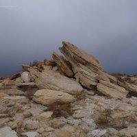 Холодные ветры праральского новембрия :: Филипп Сапожников
