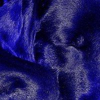 сон голубого щенка :: Александр Каманин