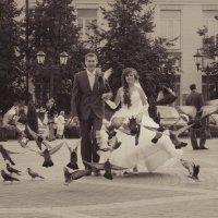 wedding :: Андрей Шевцов