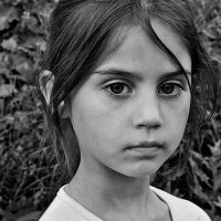 Блюдечки глаз :: Николай Смоляк