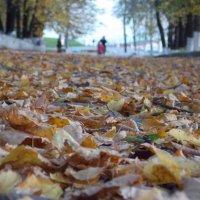 шепот листьев :: Delete Delete
