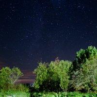 Спокойная ночь :: Артём Толокнов