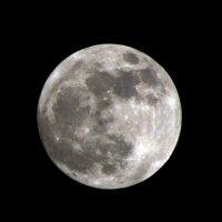 Луна :: Anton K