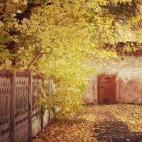 один грустный день из Осени.......... :: Снежанна Снежка