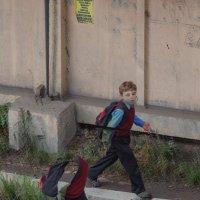 в школу :: Дмитрий Карышев