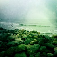 Балтийское море :: Инна Коноплева