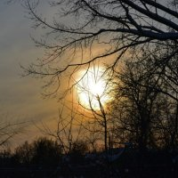 зима :: Эльмира Алеева