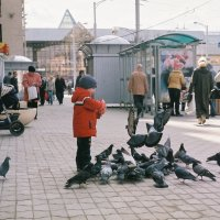мальчик и голуби :: Владимир Бернацкий