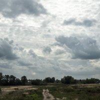 По дороге под облоками :: Ольга Сова