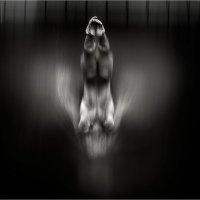 """из серии """"Летающие водоплавающие"""" :: Елена Аносова"""