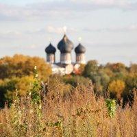Храм Покрова Пресвятой Богородицы в Измайлово :: Александр Полесский