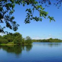 Озеро :: Александр Козенбаев