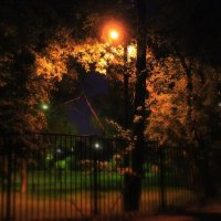 night yard :: Оксана Рыськова