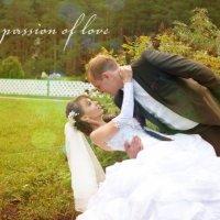 свадебная страсть :: Николай Шлыков