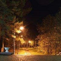 парк :: Дамир Белоколенко